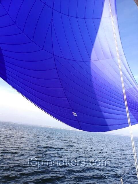 spinnaker-symétrique-bleu-achat-facile-sur-Hanse-315