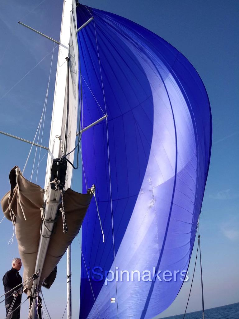 Beneteau First 310 spinnaker asymétrique bleu achat facile