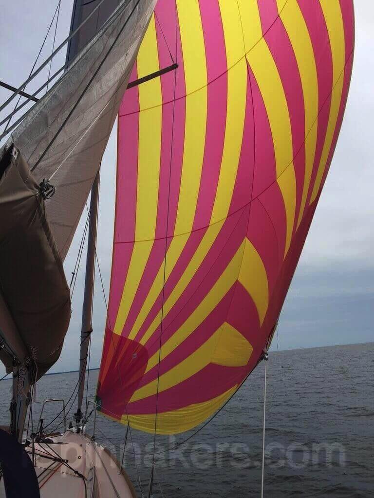 Spinnaker asymétrique rose et jaune sur Jeanneau Sun Odyssey 349