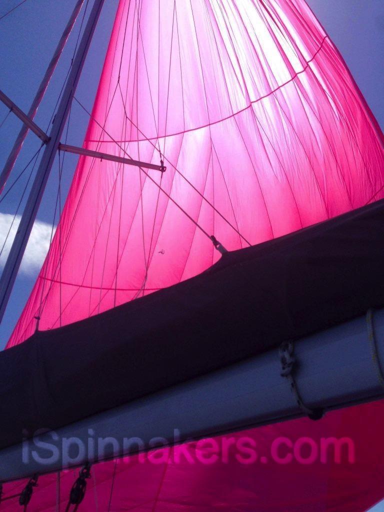 spinnaker asymétrique rose sur Jeanneau Sun Odyssey 36i